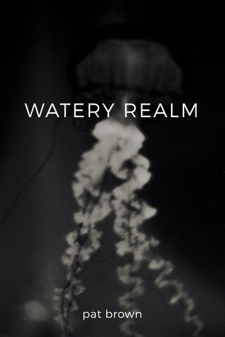 WATERY REALM pat brown