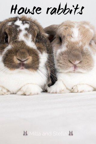 House rabbits 🐰 Milla and Stella 🐰