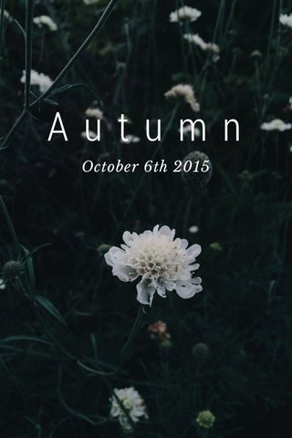 Autumn October 6th 2015