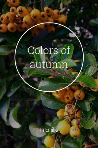 Colors of autumn In Emilia