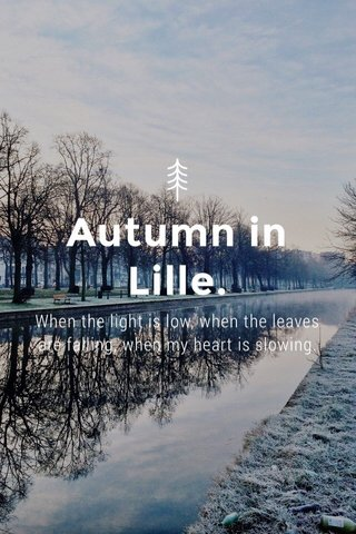 Autumn in Lille. When the light is low, when the leaves are falling, when my heart is slowing.