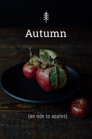 Autumn {an ode to apples}