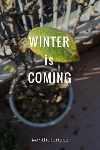 WINTER is COMING #ontheterrace