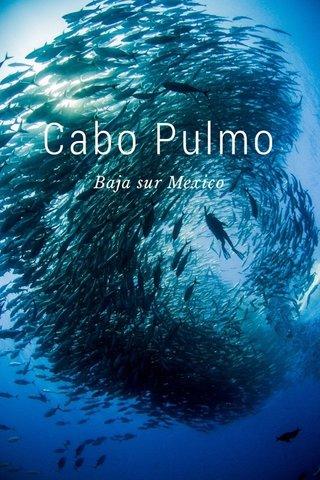 Cabo Pulmo Baja sur Mexico