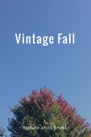 Vintage Fall Nature at its finest.