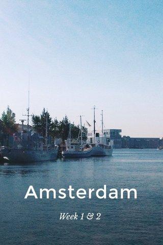 Amsterdam Week 1 & 2