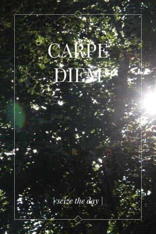 CARPE DIEM | seize the day |