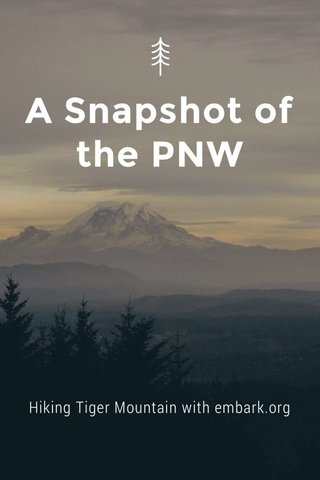 A Snapshot of the PNW Hiking Tiger Mountain with embark.org