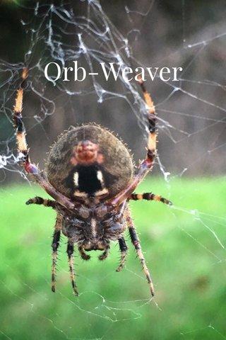 Orb-Weaver