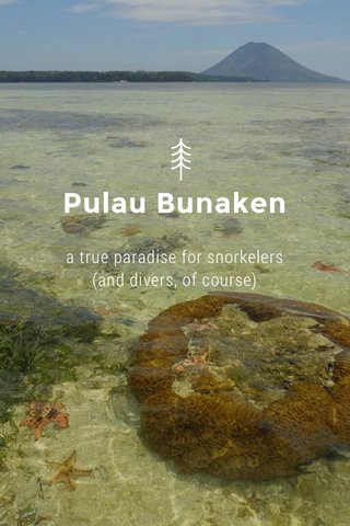 Pulau Bunaken a true paradise for snorkelers (and divers, of course)