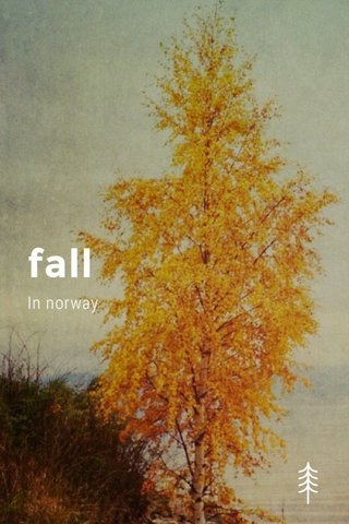 fall In norway