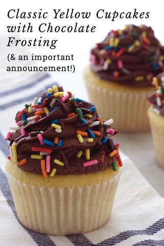 Classic Yellow Cupcakes with Chocolate Frosting (& an important announcement!)