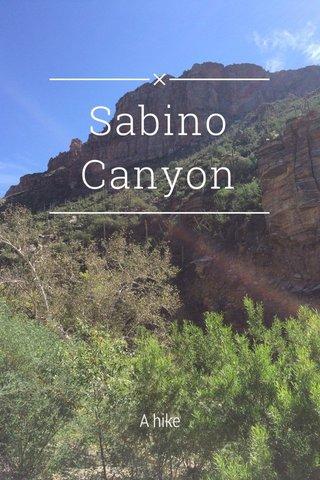 Sabino Canyon A hike
