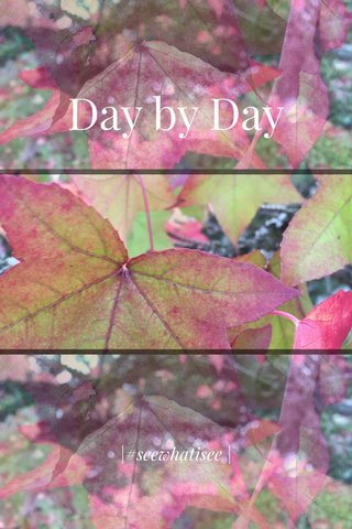 Day by Day |#seewhatisee |