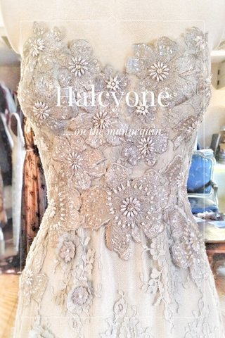 Halcyone ....on the mannequin