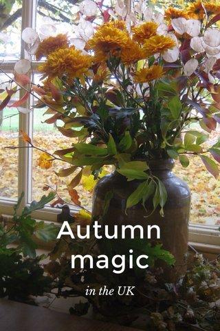Autumn magic in the UK