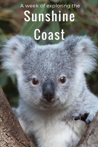 Sunshine Coast A week of exploring the