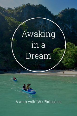 Awaking in a Dream A week with TAO Philippines