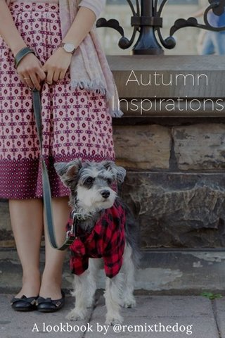 Autumn Inspirations A lookbook by @remixthedog
