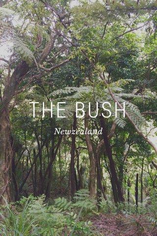 THE BUSH Newzealand