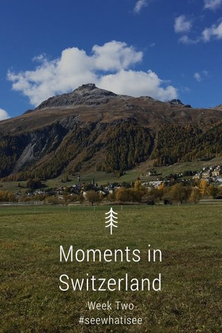 Moments in Switzerland Week Two #seewhatisee