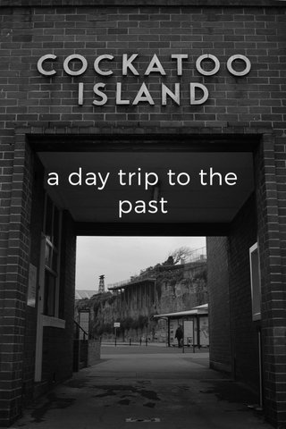 a day trip to the past