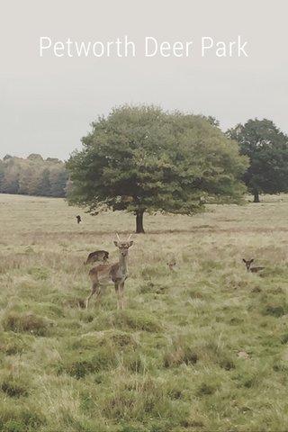 Petworth Deer Park
