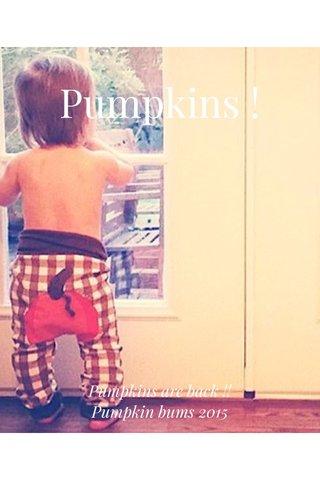 Pumpkins ! Pumpkins are back !! Pumpkin bums 2015