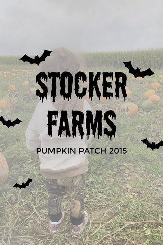 Stocker farms PUMPKIN PATCH 2015