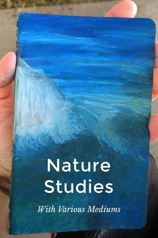 Nature Studies With Various Mediums