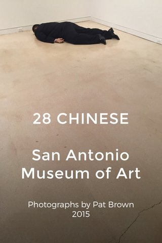 28 CHINESE San Antonio Museum of Art Photographs by Pat Brown 2015
