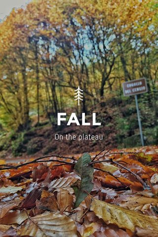 FALL On the plateau
