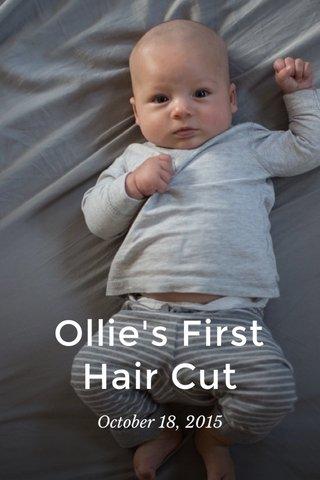 Ollie's First Hair Cut October 18, 2015