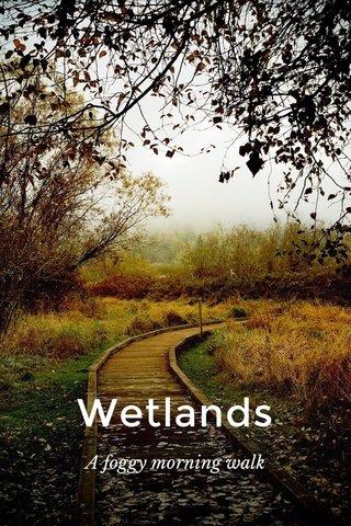 Wetlands A foggy morning walk