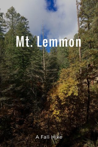 Mt. Lemmon A Fall Hike
