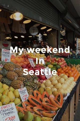 My weekend In Seattle By: me