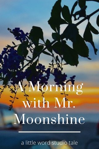 A Morning with Mr. Moonshine a little word studio tale
