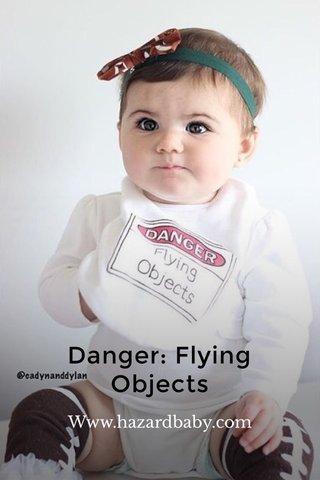 Danger: Flying Objects Www.hazardbaby.com