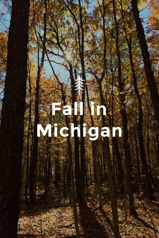 Fall in Michigan