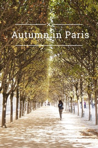 Autumn in Paris Parisian Autumn ep. 1 #parisjetaime #seemyparis