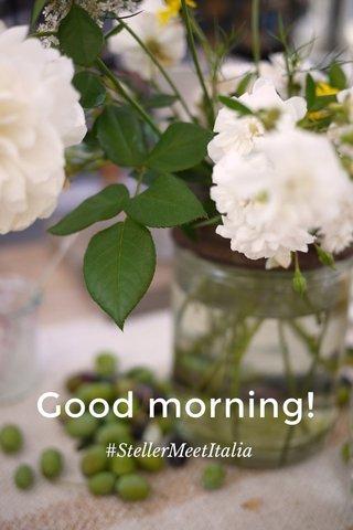 Good morning! #StellerMeetItalia