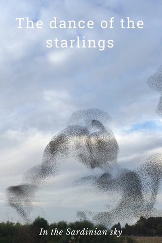 The dance of the starlings In the Sardinian sky