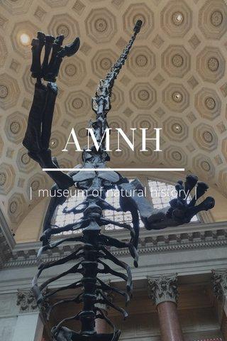 AMNH | museum of natural history |