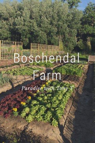 Boschendal Farm Paradise with Tony T