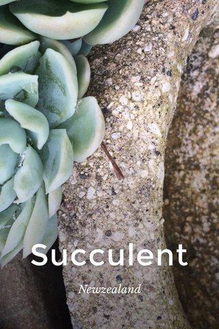 Succulent Newzealand
