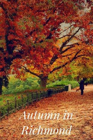 Autumn in Richmond