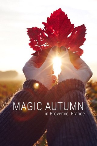 MAGIC AUTUMN in Provence, France