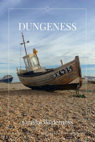 DUNGENESS Coastal Wilderness