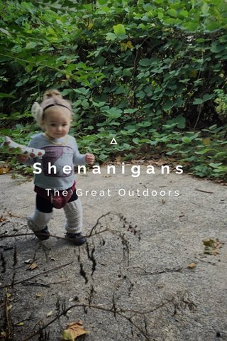 Shenanigans The Great Outdoors