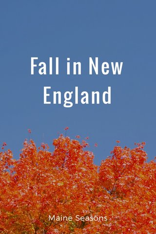 Fall in New England Maine Seasons